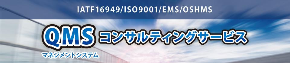 QMSコンサルティングサービス